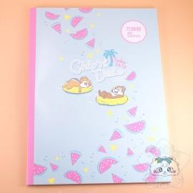 Carnet A4 Tic Et Tac Look Fruité Pastèque Petits Carreaux Disney Japon